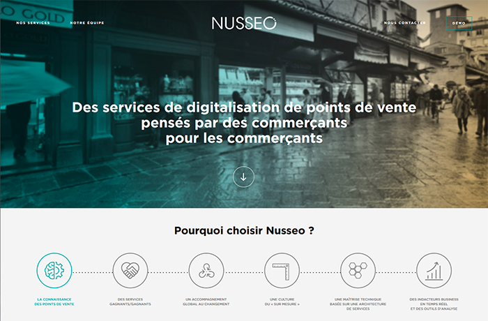 Intégration site internet nusseo